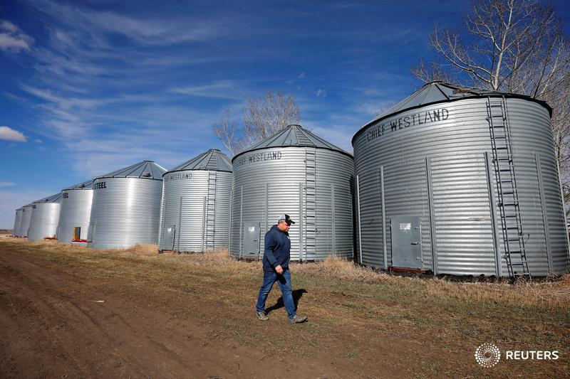 MPs demand more federal help as mental health issues rise on farms