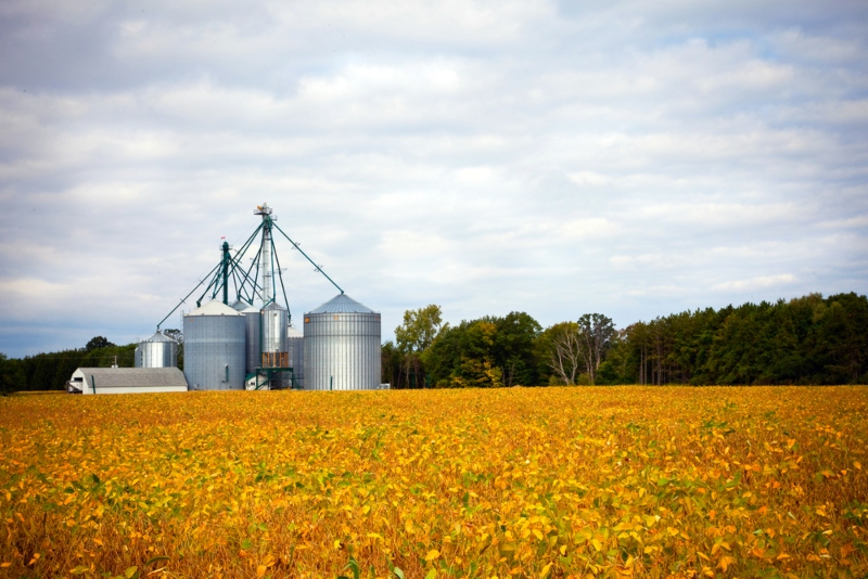 Ontario looking to boost productivity in agri-food sector