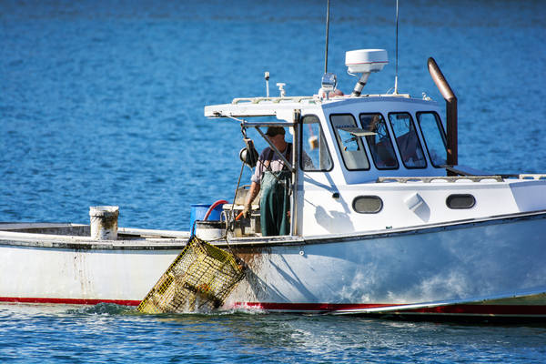 'A blindness to risk:' Board calls for mandatory life jackets for fishermen