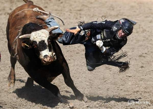 Post mortem exam confirms chronic brain injury in B.C. rodeo star