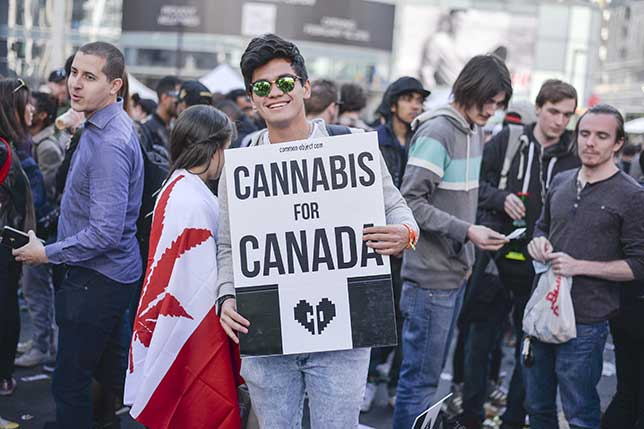 Employers fret about hazy rules around pot use