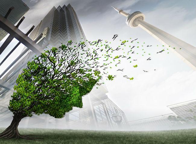 Toronto, Tree
