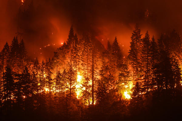 B.C. to expand occupational disease coverage to wildfire fighters