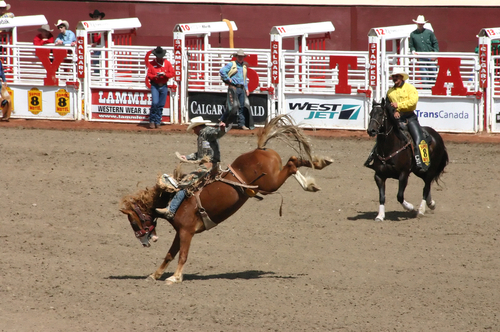 Youth minimum wage rollbacks won't apply at this year's Calgary Stampede